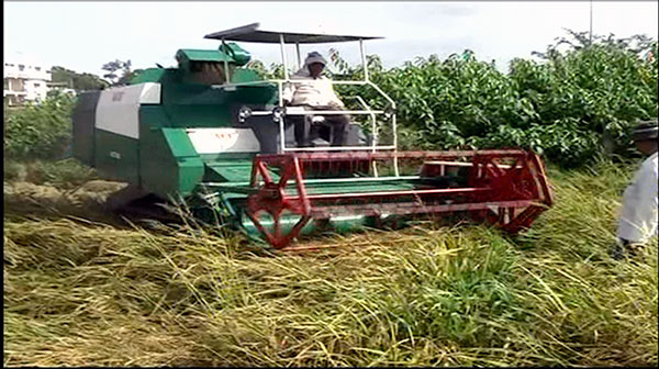 ACE Track Harvester Machine